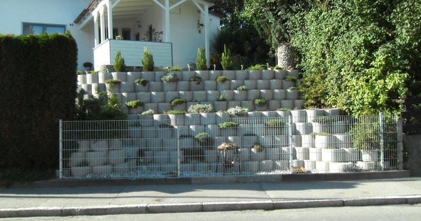 fw pflanzring betonwerk linden. Black Bedroom Furniture Sets. Home Design Ideas